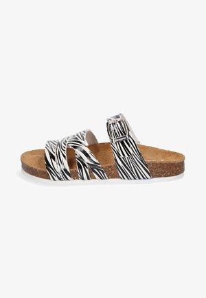 SPAIN  - Mules - zebra