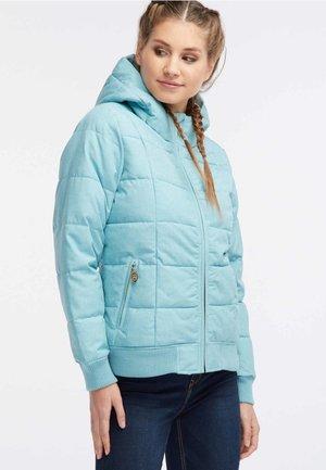 Winter jacket - mint melange