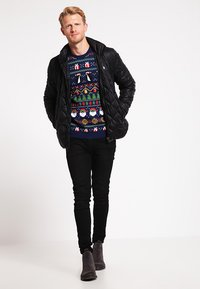 Pier One - Jumper - multicoloured - 1