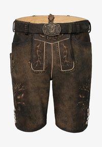 Spieth & Wensky - GOMEZ  - Leather trousers - brown - 3