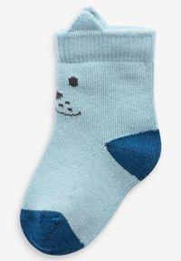 Next - 5 PACK DOG - Ponožky - blue - 5