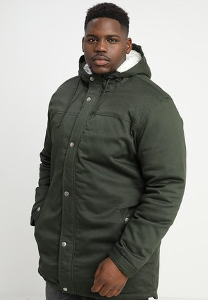ALEX WITH TEDDY - Parka - olive