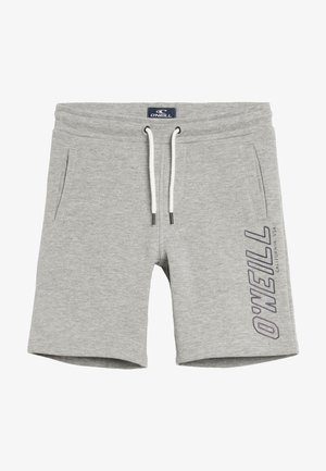 Shorts - silver melee