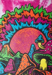 Santa Cruz - TOXIC WASTELAND UNISEX  - Print T-shirt - psychodyelic - 2