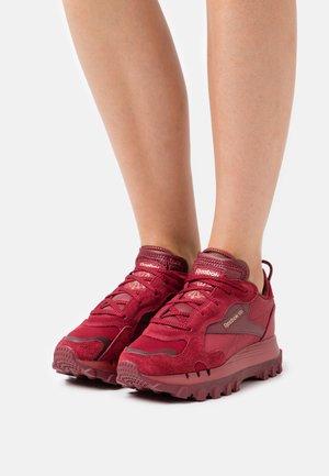 CL CARDI - Trainers - triathlon red/classic burgundy/golden bronze