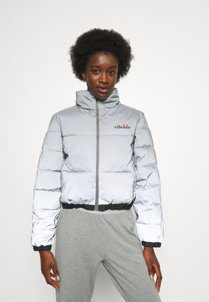 CROPPED PUFFER JACKET - Winter jacket - silver
