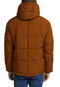 Esprit - BASIC PUFFER - Winter jacket - toffee - 5