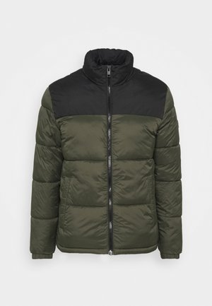 PUFFER COLLAR - Winter jacket - forest night