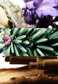 DAVIDOFF Fragrances - RUN WILD FOR HIM DEODORANT STICK - Deodorant - - - 1