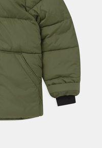 GAP - BOY WARMEST - Winter jacket - desert cactus - 5