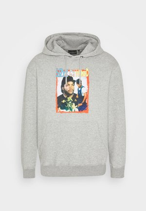 BOYS IN THE HOOD  - Jersey con capucha - grey marl