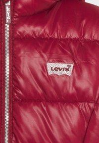 Levi's® - PUFFER - Winter jacket - cabernet - 4