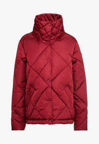 Save the duck - MEGGA - Winter jacket - mineral red - 3