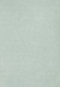 Opus - GENJO - Sweat à capuche - ice green - 2