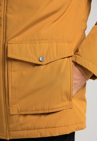 DreiMaster - Winter coat - senf - 3