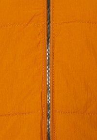 ONLY - PUFFER - Winter jacket - pumpkin spice - 2