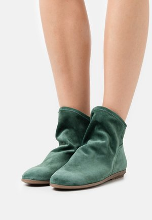 Classic ankle boots - hierba
