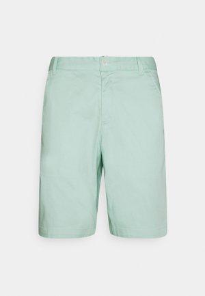 LATROBE SHORT - Sports shorts - mist green