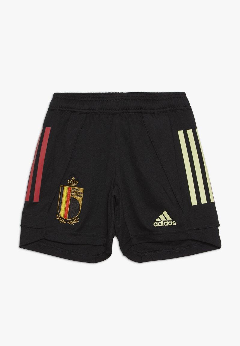 adidas Performance - BELGIUM RBFA TRAINING SHORTS - Sportovní kraťasy - black