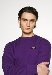 Dickies - NEW JERSEY - Felpa - deep purple - 3
