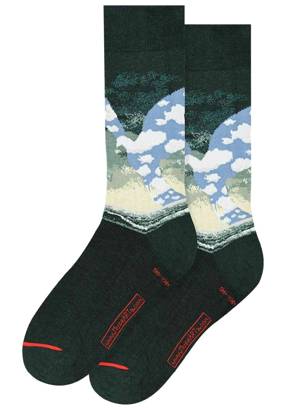 Femme RENÉ MAGRITTE : THE GREAT FAMILY - Chaussettes