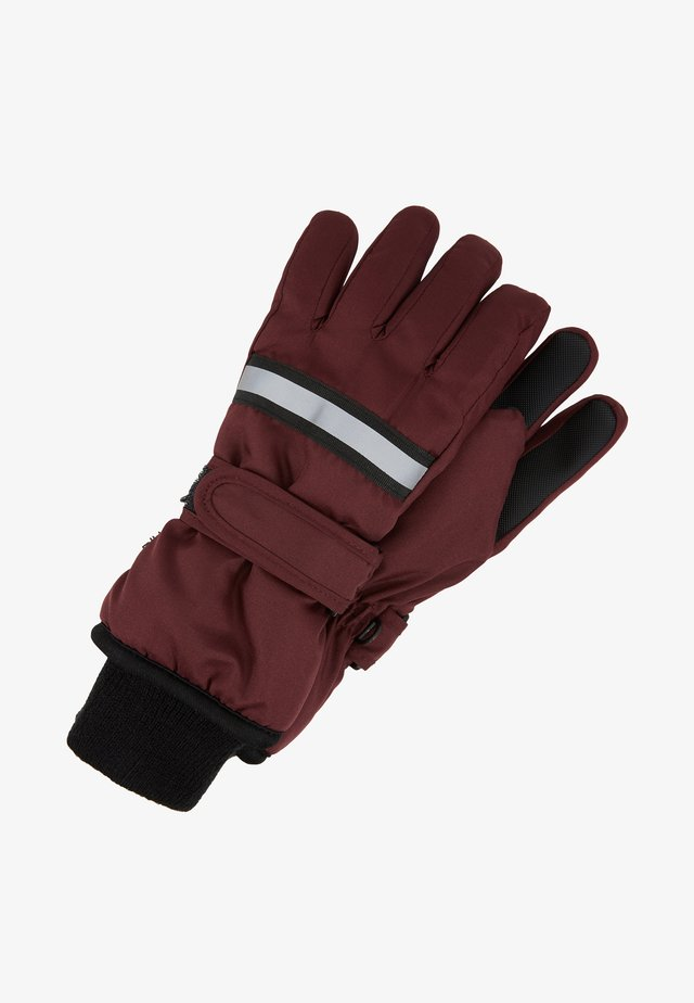 THINSULATE GLOVES - Guantes - vineyard wine
