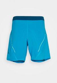Dynafit - ALPINE PRO SHORTS - Sports shorts - frost - 0