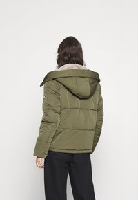 Tommy Jeans - HOODED JACKET - Winter jacket - olive tree - 2