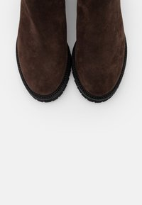 Högl - Classic ankle boots - brown - 5