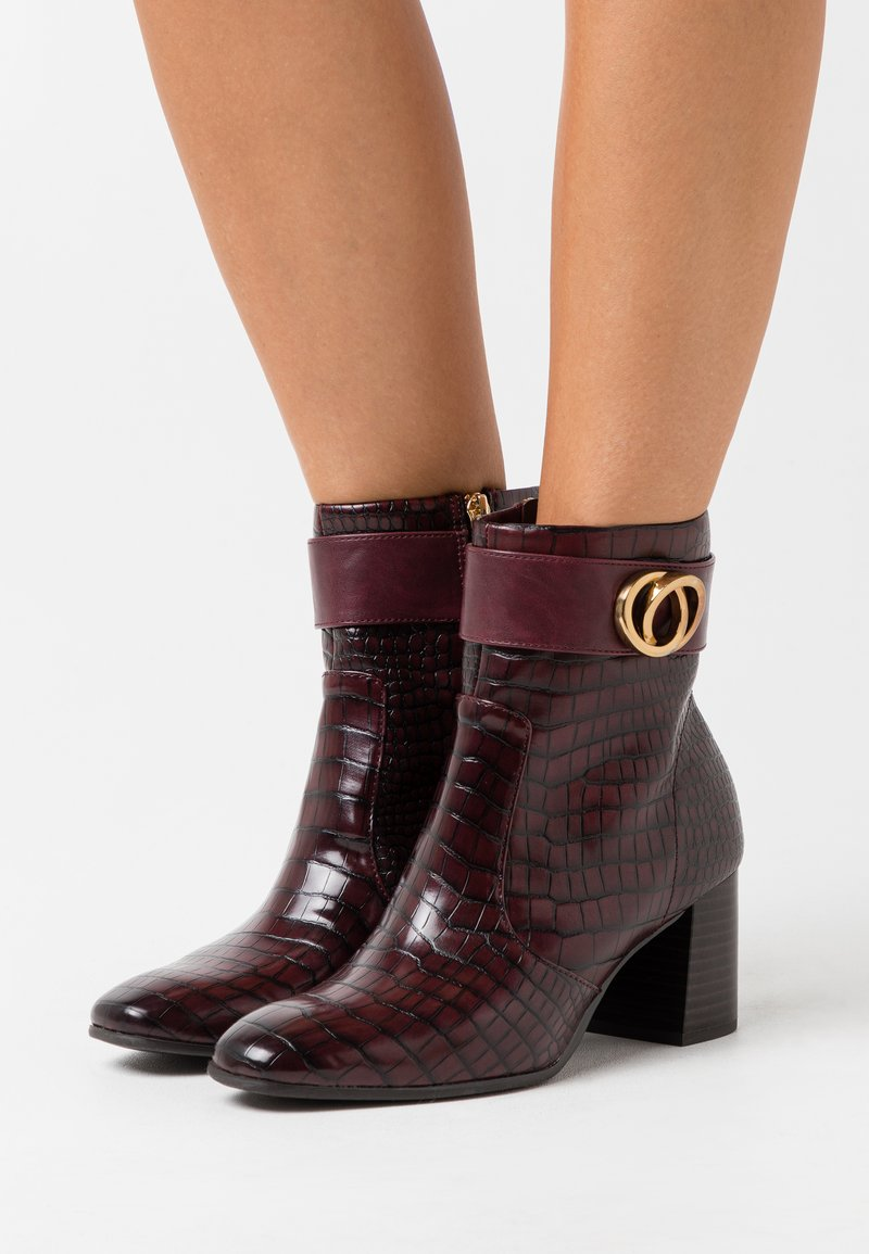 Tamaris - BOOTS - Classic ankle boots - merlot