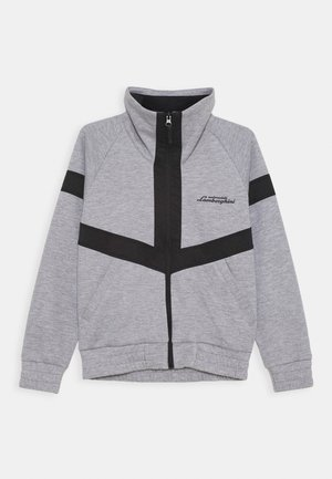 JACKET WITH CONTRAST INSERTS - Light jacket - grey antares