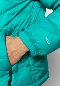 The North Face - Down jacket - jaiden green - 7