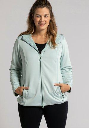 Zip-up hoodie - mintgrau
