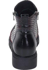 Piazza - Ankle boots - bordeaux - 2