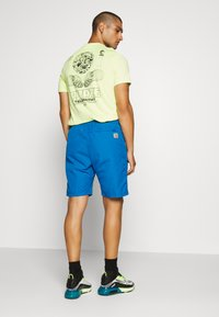 Carhartt WIP - CLOVER LANE - Shorts - azzuro - 2