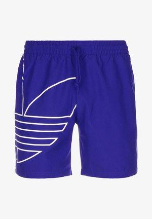 Swimming shorts - royal blue