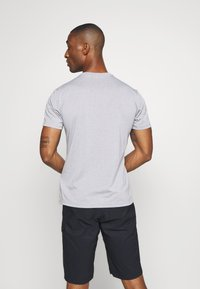 Salewa - ALTA VIA DRY TEE - T-shirt med print - heather grey - 2