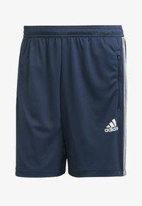 adidas Performance - DESIGNED TO MOVE SPORT 3-STREIFEN  - Pantalón corto de deporte - blue - 5