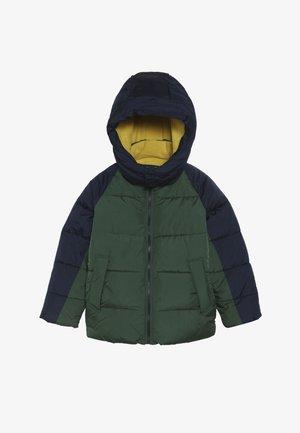 BOY WARMEST - Winter jacket - green gables