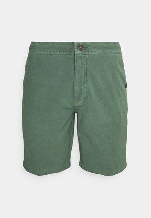 REGGIE BOARDWALK - Shorts da mare - mid green