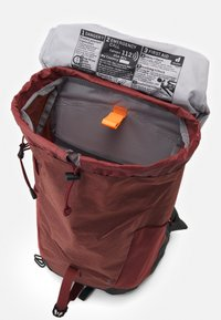 Deuter - AC LITE 24 UNISEX - Backpack - redwood/ivy - 2