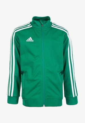 TIRO 19 CLIMALITE TRACKSUIT - Training jacket - bold green / collegiate green / white