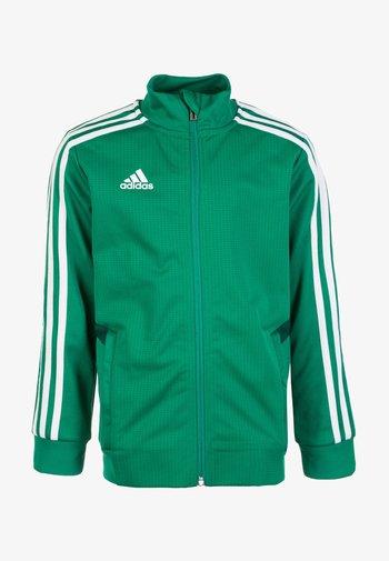 TIRO 19 CLIMALITE TRACKSUIT - Training jacket - bold green / collegiate green / white