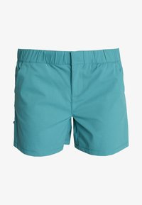 Columbia - FIRWOOD CAMP SHORT - Sports shorts - waterfall - 3