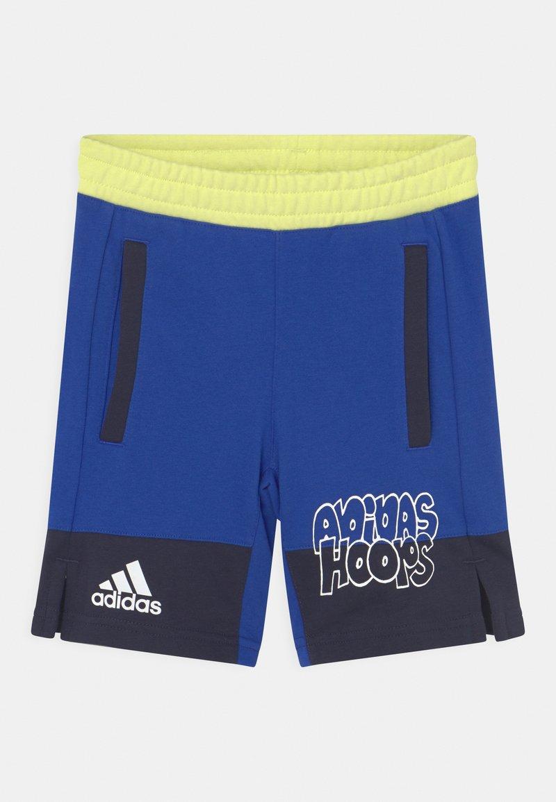 adidas Performance - BASKETBALL UNISEX - Sports shorts - bold blue/legend ink/pulse yellow