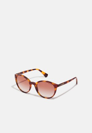 Sunglasses - shiny sponged brown havana