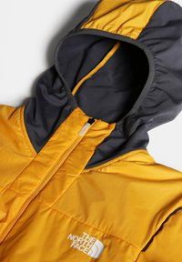 The North Face - M SPEEDTOUR ALPHA HOODIE JACKET - Blouson - summit gold/vanadis grey - 4