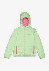 Icepeak - KLINE - Winter jacket - aloe - 3