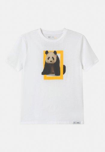 BOY NATIONAL GEOGRAPHIC TIGER - Print T-shirt - optic white