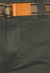 Blend - Shorts - forest night - 3